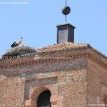 Foto Cigüeñas en Alcorcón 1