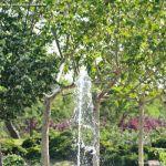 Foto Parque de las Comunidades de Alcorcon 4