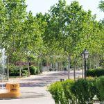 Foto Parque de las Comunidades de Alcorcon 6