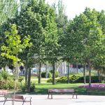 Foto Parque de las Comunidades de Alcorcon 8
