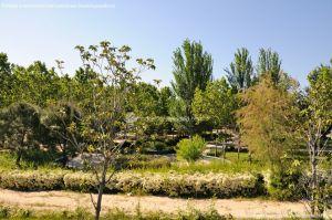 Foto Parque de los Castillos 6