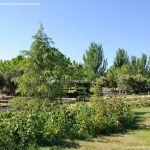 Foto Parque de los Castillos 16