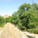Foto Corredor Ecofluvial del río Henares 3