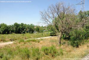 Foto Corredor Ecofluvial del río Henares 4