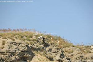 Foto Riscos y Cortados junto a Laguna El Campillo 7