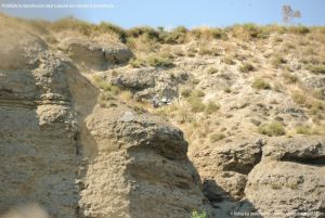 Foto Riscos y Cortados junto a Laguna El Campillo 9