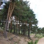 Foto Parque Regional de la Cuenca Alta del Manzanares 31