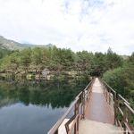 Foto Parque Regional de la Cuenca Alta del Manzanares 53