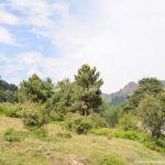 Foto Parque Regional de la Cuenca Alta del Manzanares 65