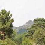 Foto Parque Regional de la Cuenca Alta del Manzanares 66