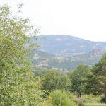 Foto Parque Regional de la Cuenca Alta del Manzanares 68