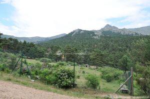 Foto Parque de Aventuras de Pino a Pino 7