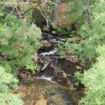 Foto Río en La Barranca 2