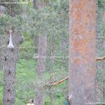Foto Ecoparque Aventura Amazonia 26