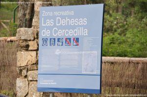 Foto Zona Recreativa Las Dehesas de Cercedilla 7