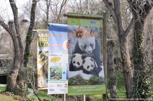Foto Zoo Acuarium de Madrid 10
