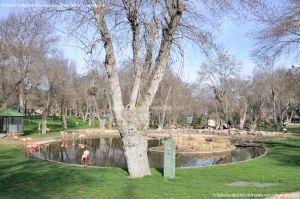 Foto Zoo Acuarium de Madrid 13