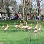 Foto Zoo Acuarium de Madrid 14