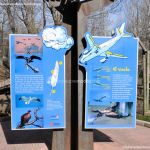 Foto Zoo Acuarium de Madrid 17