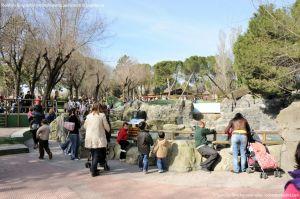 Foto Zoo Acuarium de Madrid 31