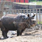 Foto Zoo Acuarium de Madrid 80