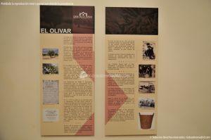 Foto Museo Etnográfico Casa de la Tercia 7