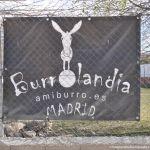 Foto Asociación Amiburro 1