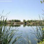 Foto Lagunas de El Porcal 5