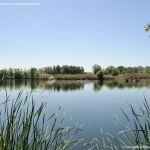 Foto Lagunas de El Porcal 7