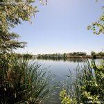 Foto Lagunas de El Porcal 9