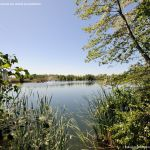 Foto Lagunas de El Porcal 10