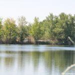 Foto Lagunas de El Porcal 11