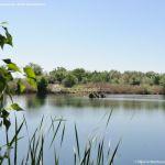 Foto Lagunas de El Porcal 13