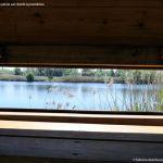 Foto Red de rutas ornitológicas en el Parque Regional del Sureste 4