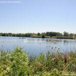 Foto Red de rutas ornitológicas en el Parque Regional del Sureste 5