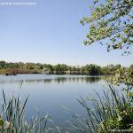 Foto Red de rutas ornitológicas en el Parque Regional del Sureste 32