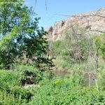 Foto Río Jarama en el Parque Regional del Sureste 1
