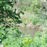 Foto Río Jarama en el Parque Regional del Sureste 3