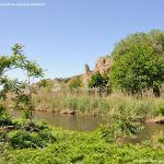 Foto Río Jarama en el Parque Regional del Sureste 5