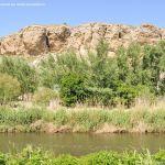Foto Río Jarama en el Parque Regional del Sureste 6