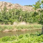 Foto Río Jarama en el Parque Regional del Sureste 7