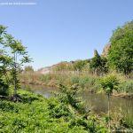 Foto Río Jarama en el Parque Regional del Sureste 9
