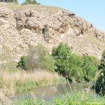 Foto Río Jarama en el Parque Regional del Sureste 12