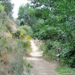 Foto Ruta por el Área Recreativa del Retamar 9