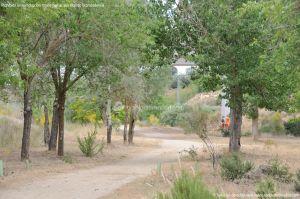 Foto Ruta por el Área Recreativa del Retamar 16