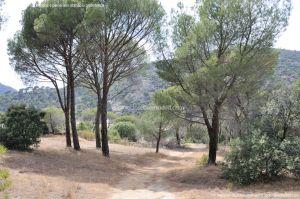 Foto Camino de Acceso a Lancha del Yelmo 1