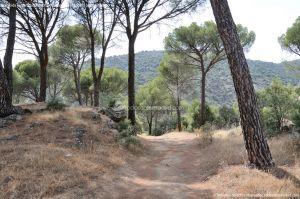 Foto Camino de Acceso a Lancha del Yelmo 5