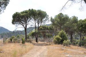 Foto Camino de Acceso a Lancha del Yelmo 9
