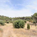 Foto Camino de Acceso a Lancha del Yelmo 11