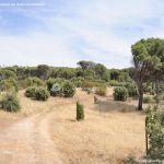 Foto Camino de Acceso a Lancha del Yelmo 12